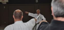 Kobudo Seminar 10